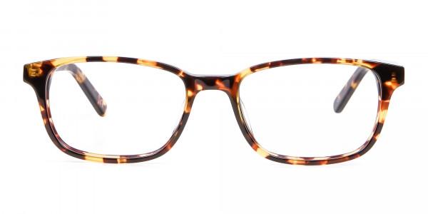 Havana & Tortoiseshell Wayfarer Glasses - 5