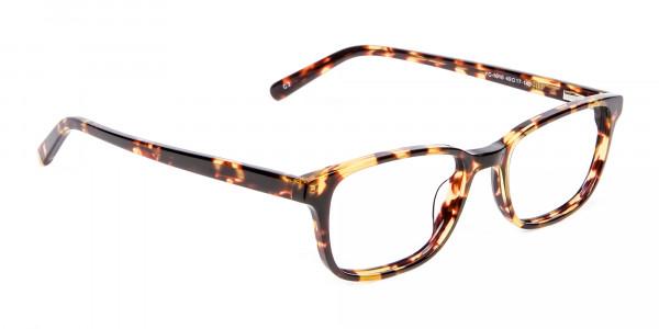 Havana & Tortoiseshell Wayfarer Glasses - 1