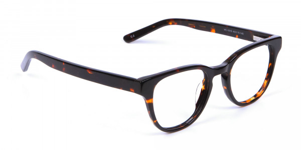 Black and Brown Glasses - 1