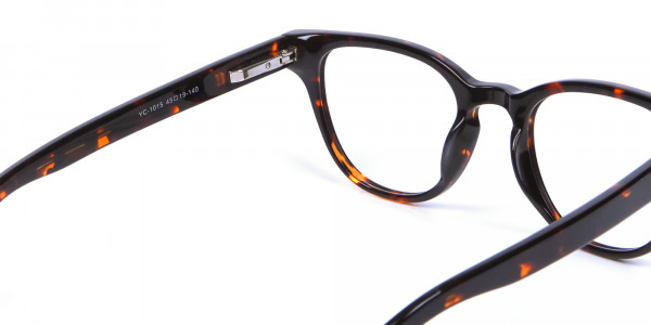 Black and Brown Glasses - 4