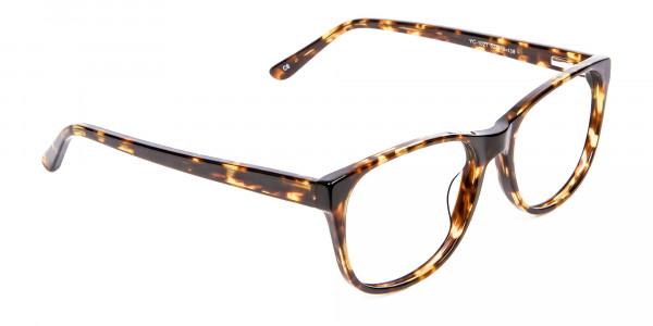 Tortoiseshell & Havana Glasses -2