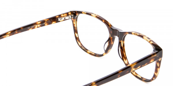 Tortoiseshell & Havana Glasses -5