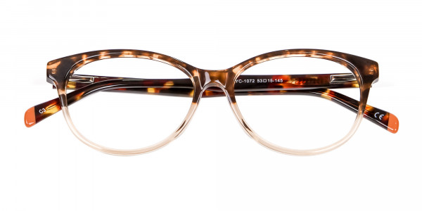 Havana & Tortoiseshell Chic Glasses - 5