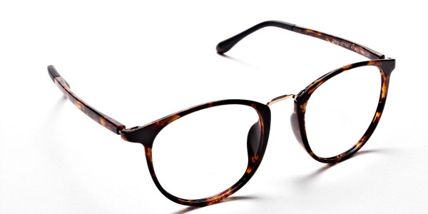 Havana & Tortoise Transparent Glasses -1