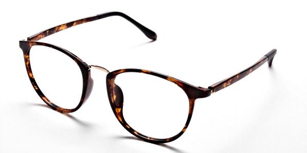 Havana & Tortoise Transparent Glasses -2