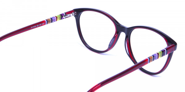 Colourful Cat Eye Frame - 4