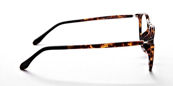 Havana & Tortoise Transparent Glasses -3