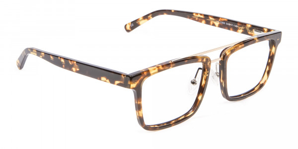 Funky Tortoiseshell and Havana Frames - 1
