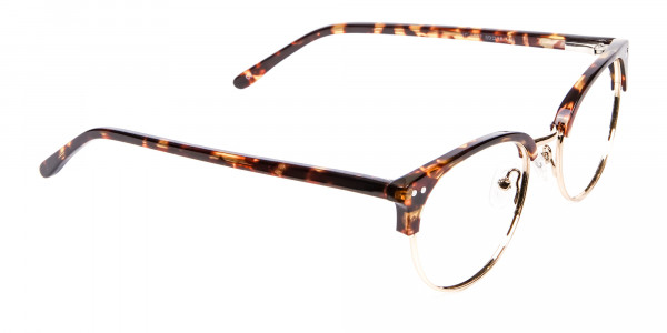Havana Tortoise and Gold Glasses -2