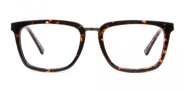 Caramel & Havana Frames -1