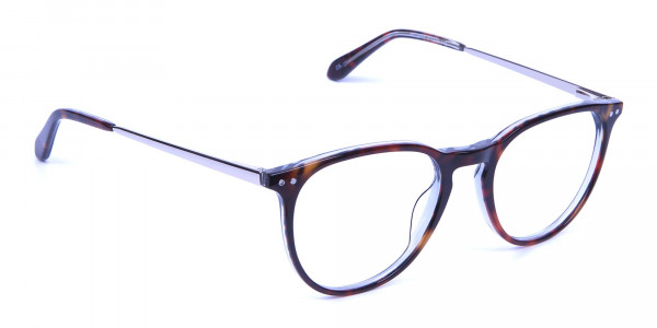 Dark Havana & Tortoise Circle Glasses -1