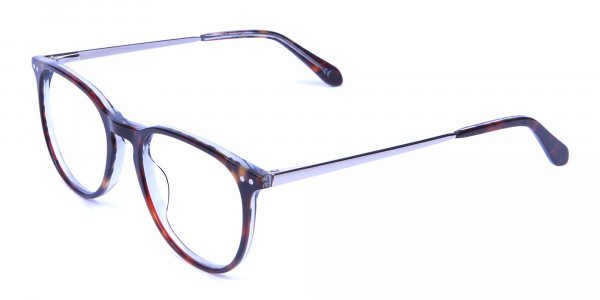 Dark Havana & Tortoise Circle Glasses -2