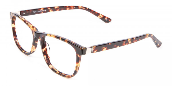 Glasses in the Tortoiseshell with New Chemistry - 2