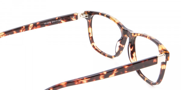 Glasses in the Tortoiseshell with New Chemistry - 4