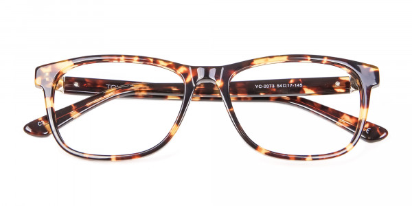 Glasses in the Tortoiseshell with New Chemistry - 5