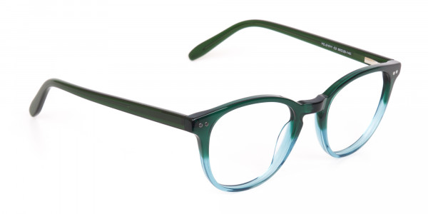 Hunter Green & Teal Two-Tone Glasses-2