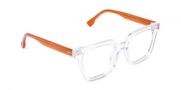 Crystal-Clear-Wayfarer-Glasses-Frame-2