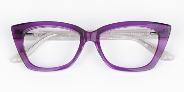 Wine-Purple-Cat-Eye-Glasses-6