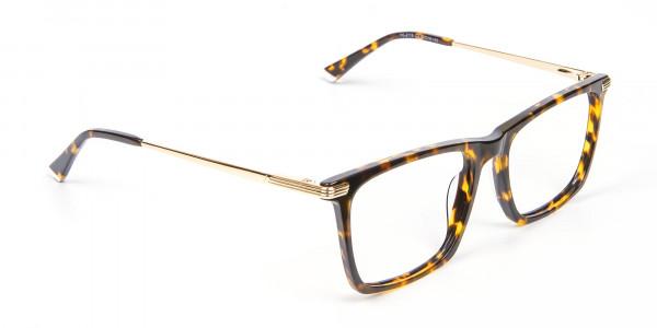 Vigorous Tortoiseshell Colour Frames -2