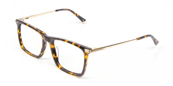 Vigorous Tortoiseshell Colour Frames -3