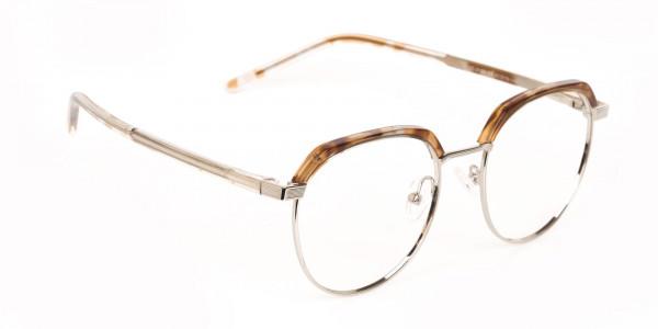 Brown, Honey Tortoise & Silver Browline Glasses-2