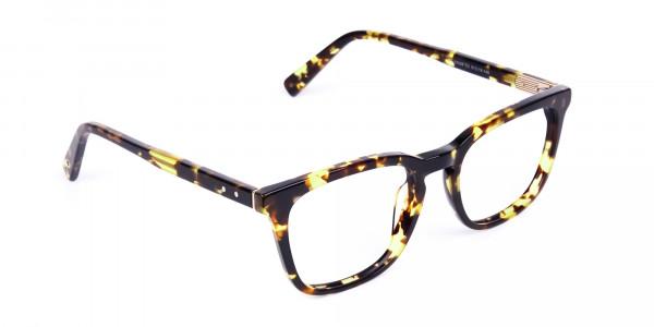 Tortoise-Brown-Wayfarer-Glasses-2