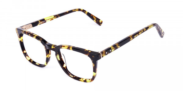 Tortoise-Brown-Wayfarer-Glasses-3