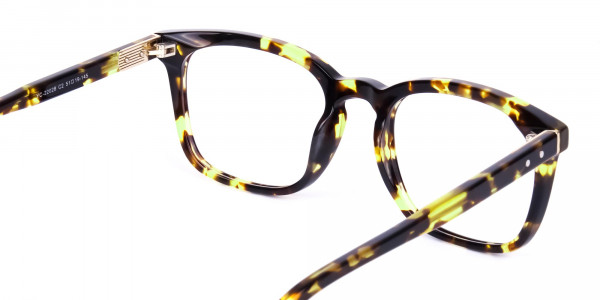Tortoise-Brown-Wayfarer-Glasses-5