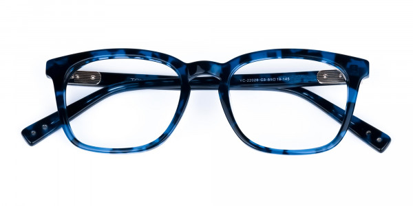 Blue-Tortoise-Wayfarer-Glasses-6