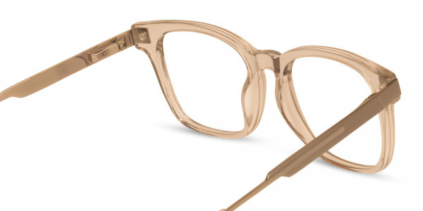 Crystal-Nude-Wayfarer-Glasses-5