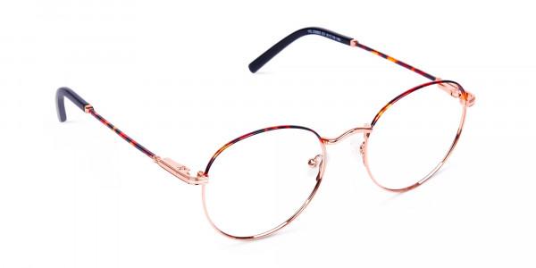 Gold-Round-Tortoise-Shell-Glasses-2