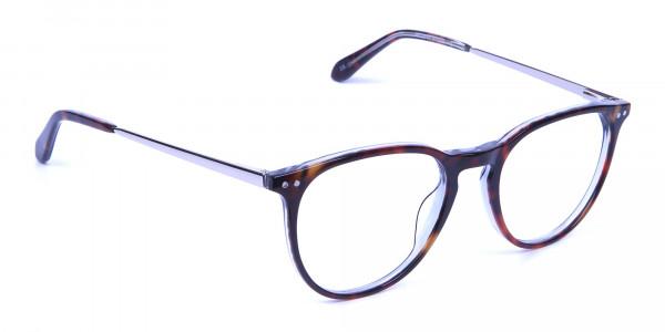 Dark Havana & Tortoise Circle Glasses -1