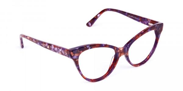 Brown-Tortoise-Cat-Eye-Glasses-Frames-2