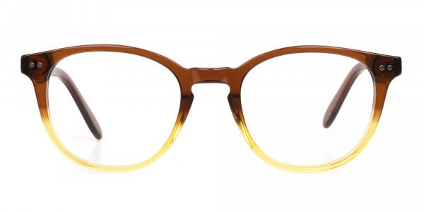 Crystal Brown & Honey Havana Two-Tone Glasses-1