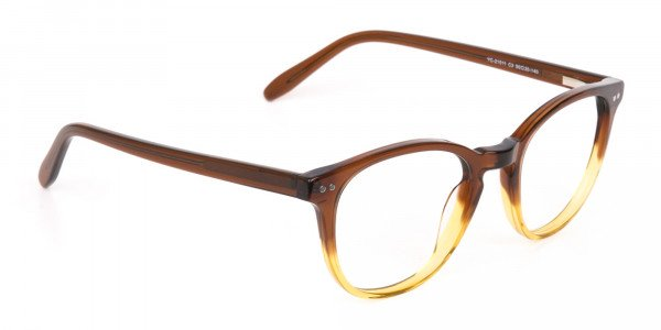 Crystal Brown & Honey Havana Two-Tone Glasses-2