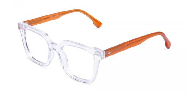 Crystal-Clear-Wayfarer-Glasses-Frame-3