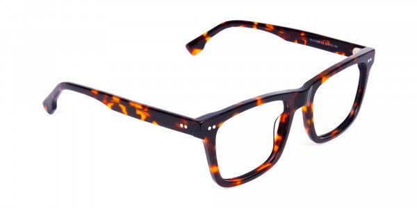 Tortoise-and-Brown-Square-Glasses-2