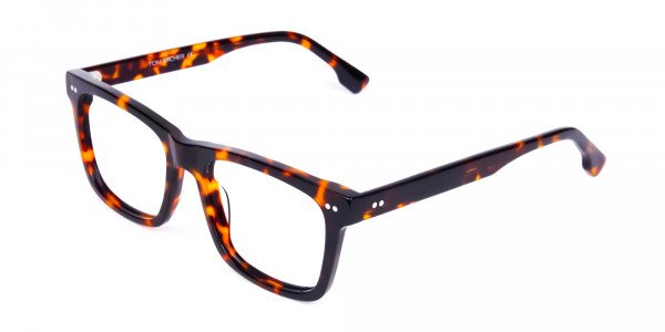 Tortoise-and-Brown-Square-Glasses-3