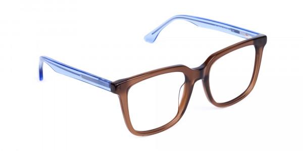 Crystal-Brown-Wayfarer-Glasses-2