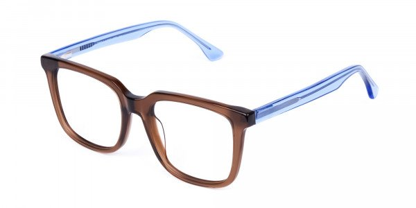 Crystal-Brown-Wayfarer-Glasses-3
