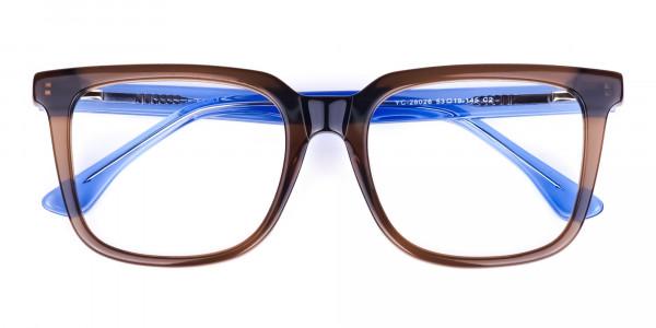 Crystal-Brown-Wayfarer-Glasses-6