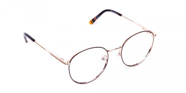 Brown-Gold-Round-Full-Rim-Glasses-2
