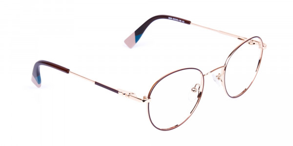 Brown-and-Gold-Round-Glasses-2