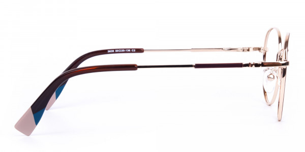 Brown-and-Gold-Round-Glasses-4