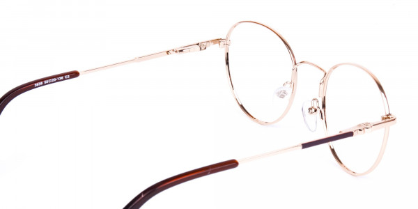 Brown-and-Gold-Round-Glasses-5
