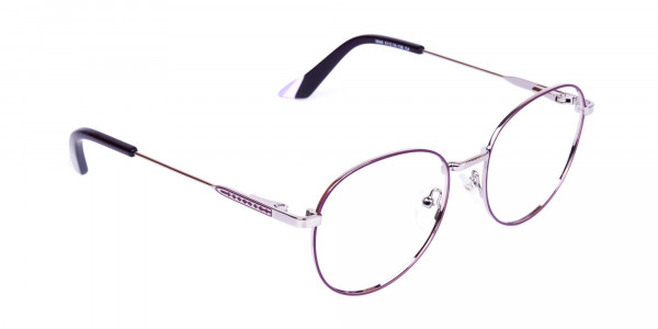 Purple-and-Silver-Metal-Round-Glasses-2