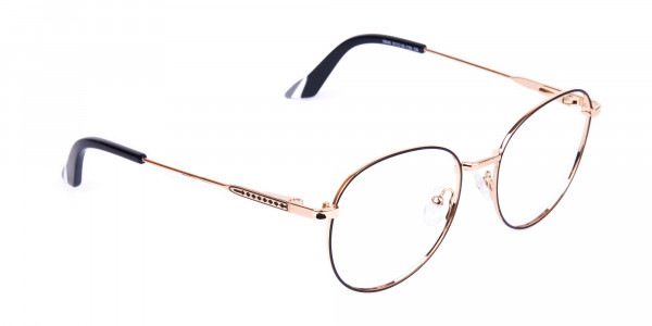 Black-and-Gold-Round-Glasses-2