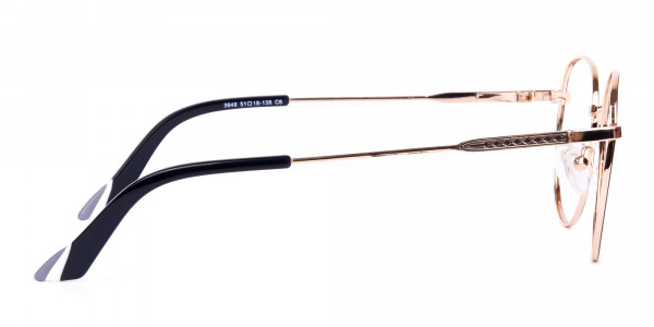Black-and-Gold-Round-Glasses-4