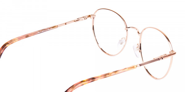 teashade prescription glasses-5