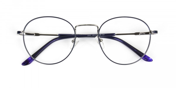 Royal Blue Silver Round Spectacles - 6